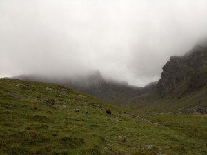 The view up into Hollowstones, the casualties were in the mist above Pikes Crag (centre)