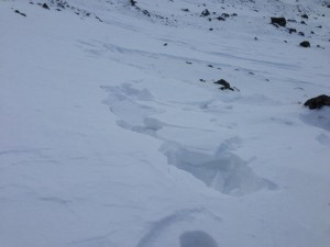 The snow readily fractures into blocks when walked on. A classic sign of 'windslab'
