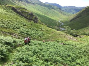 Crinkle Crags - Wed 12th Jul 2017 - IMG_2760
